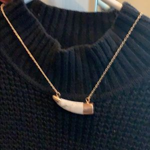 Copper chain & long horn necklace